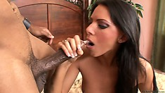 Sexy brunette with tiny tits and a divine ass has a passion for black cock