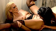 Ava Rose and Darryl Hanah licking each other's pussies in a lesbian video