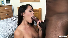 Brunette MILF makes Gator pay with hot pussy licking and an interracial fuck