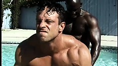 Hot muscular white boy has two black studs fucking his ass by the pool