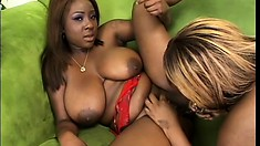Stunning bitches give each other a deep and hard dildo fucking