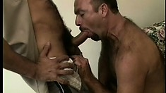 Hairy balding dude sucks a dick and jacks off over his stomach