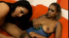Busty lesbians munch on each other's cunts until they cum hard