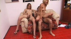 Lusty jezebel Milena munches on a hard dong with her tranny friend
