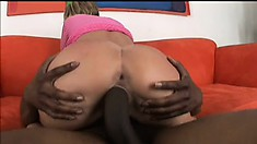 Blonde beauty with a spicy ass Nikki surrenders her wet pussy to a huge black cock