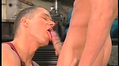 Handsome new guy gets his ass rammed by his horny co-workers