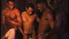Horny white dude gets his ass fucked hard by a group of black guys