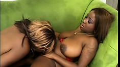 Two curvy black babes engage in passionate lesbian action on the couch