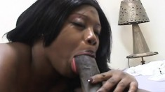Fat ebony lady Decollector has a black prick making her snatch happy