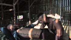 Tattooed studs suck each other's dicks and enjoy some intense anal sex