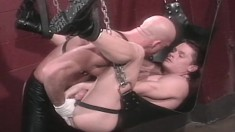 Sting rides in a sex swing getting his ass toyed and fists his partner
