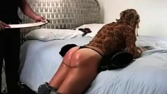 Best Spanking Vids At Fetish Network